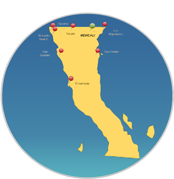 Baja Calif Supply Chain Management